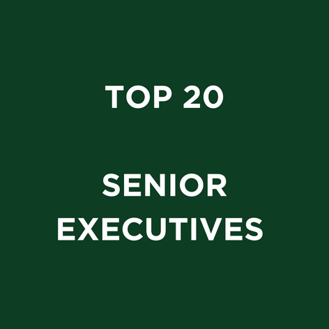 TOP 20 SENIOR EXECUITVES