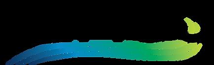 TEMCO Logo - Final.png