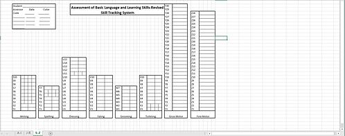 ABLLS-R Excel Grid