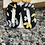 Thumbnail: Black and yellow floral earring