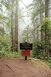 Damnation Trail hike