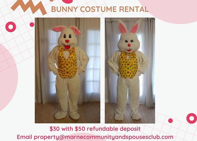 Bunny Costume Rental.jpg