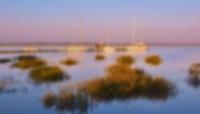 jekyll-island-club-property-bay-views-at-sunset.jpg