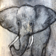 elefantenbaby 50x50