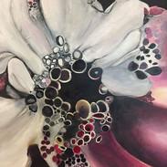 orchidee 50x70