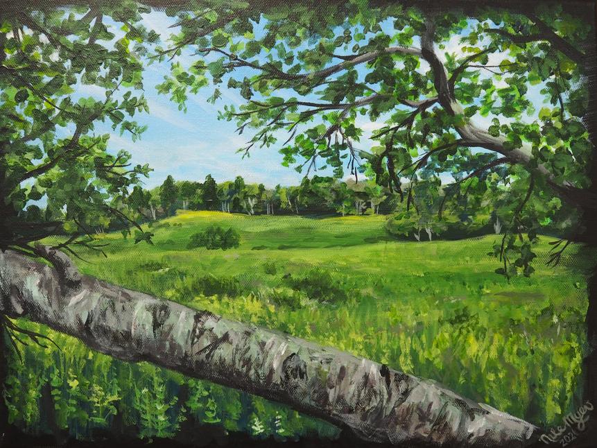 """""""Big Meadow, Skyline"""""""