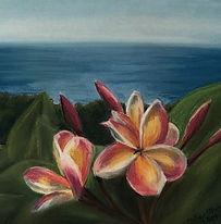 Maui Plumeria.jpg