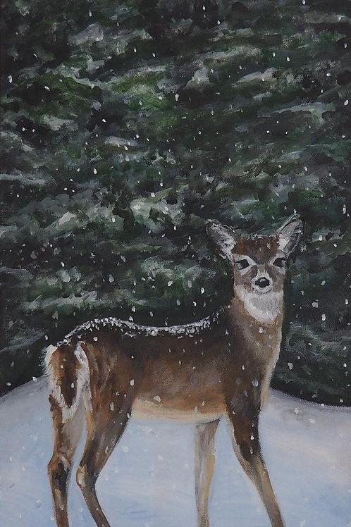 Silent as Snow