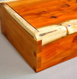 Yew Box