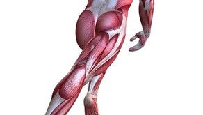 Rabdomiolisis, el sobreentrenamiento que daña el organismo