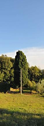 Villa Di Masseto9.jpg