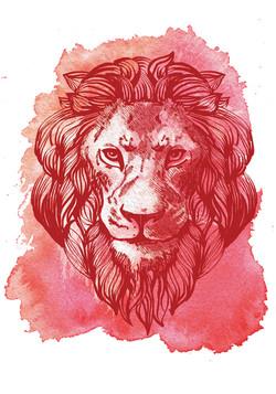 lion_lion