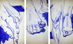 stranica_anatomy