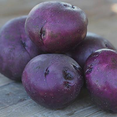 purple round potatoes