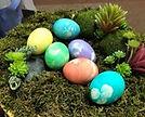 egg on moss 1_edited.jpg