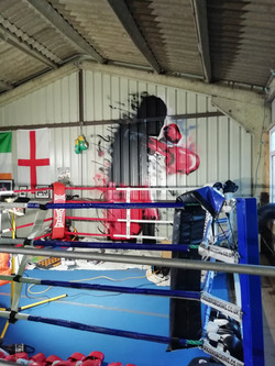 Boom! 12ft boxer at The lions den gym