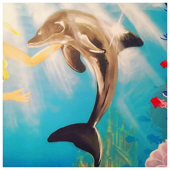 Dolphin Detail From underwater mural