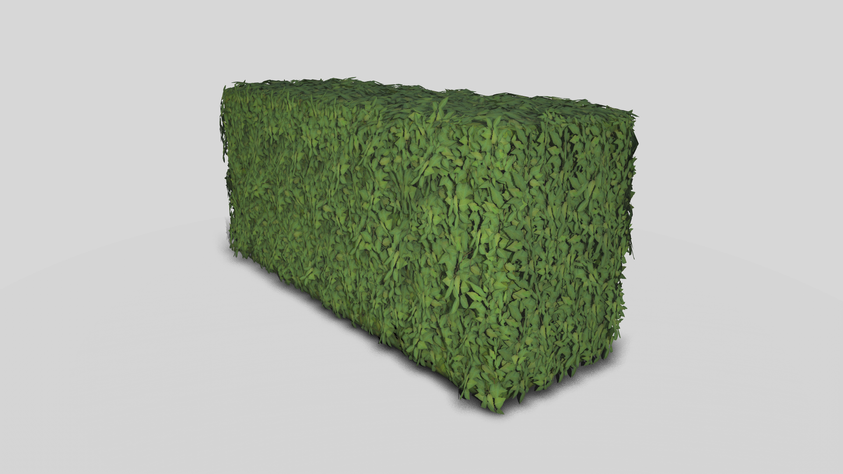 Leafy hedge