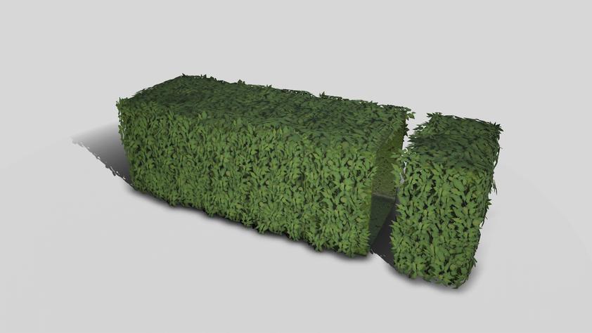 Tiling leaf hedge