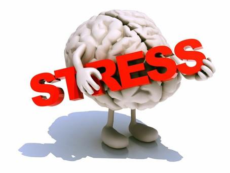 Надпочечники-это наши защитники от стресса!