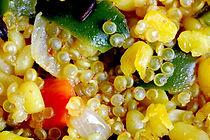 Quinoa 1.JPG