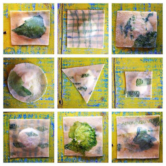 Seaweed Ravioli
