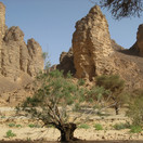 algeria-644442_1280.jpg