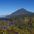 09 Pico - Il vulcano omonimo.jpg