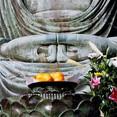 japan kamakura buddha.jpg