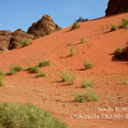 Wadi Rum 5.jpg
