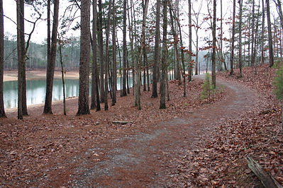 IronHill-Red Top Mtn Trail.jpg