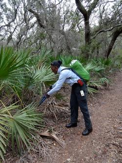 Trail Maintenance Service Work