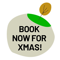 BOOK NOW XMAS.png