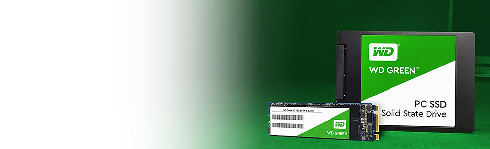 wd-green-banner.png