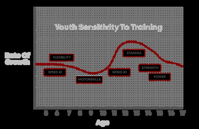 youth hockey training, minor hocey training, off-ice training