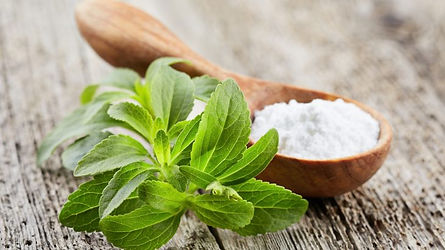 Which-plant-based-natural-sweetener-is-t