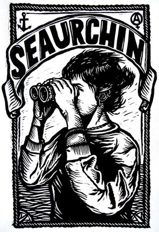 seaurchin.JPG