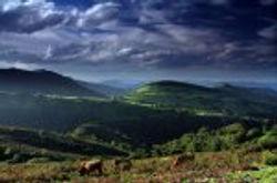 vista_general_yernes_y_tameza.jpg