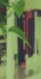 blur-bookcase-books-2986609.jpg