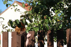 Girl hiding under apple tree