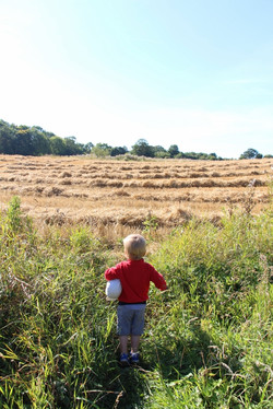 Child in a field at forest school