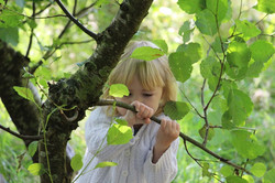 embodied learning in nature