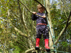 Tree climbing at a forest school in Scotland