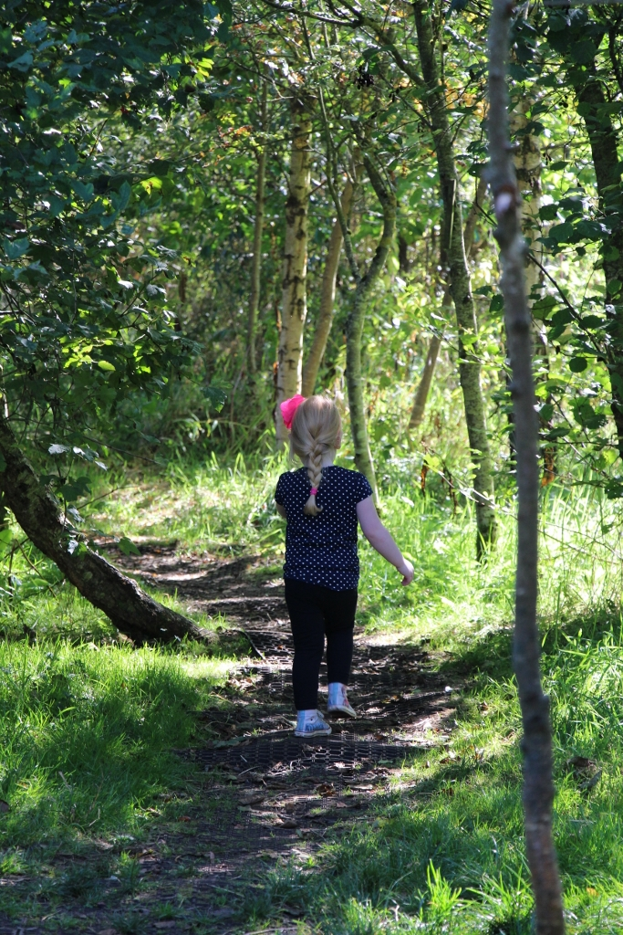 Child walking in nature through the woods