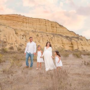 The Arroyo Family