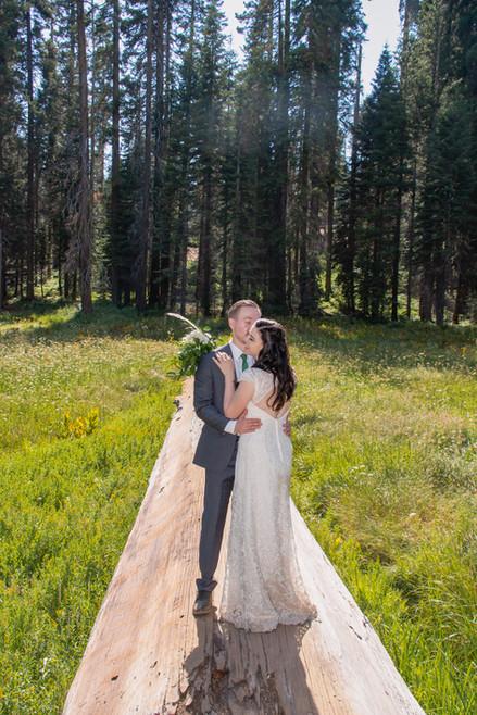 Sequoia National Park Elopement