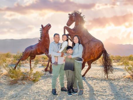 Anza Borrego Desert State Park        Family  Session