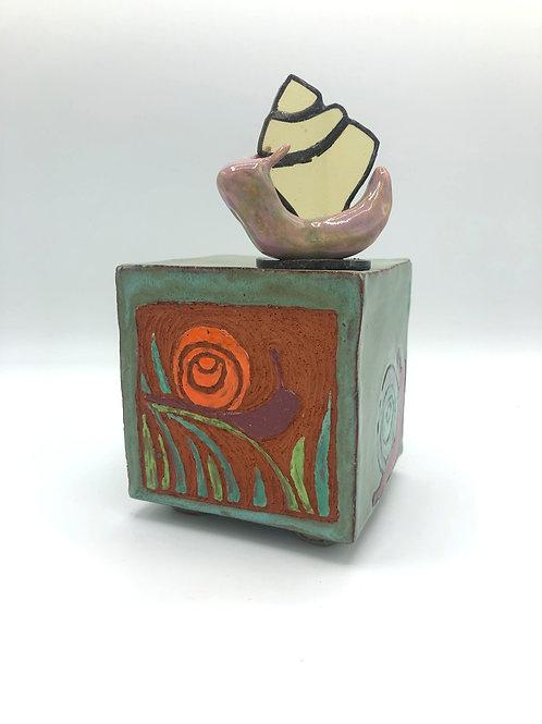Treasure Box Mollusca