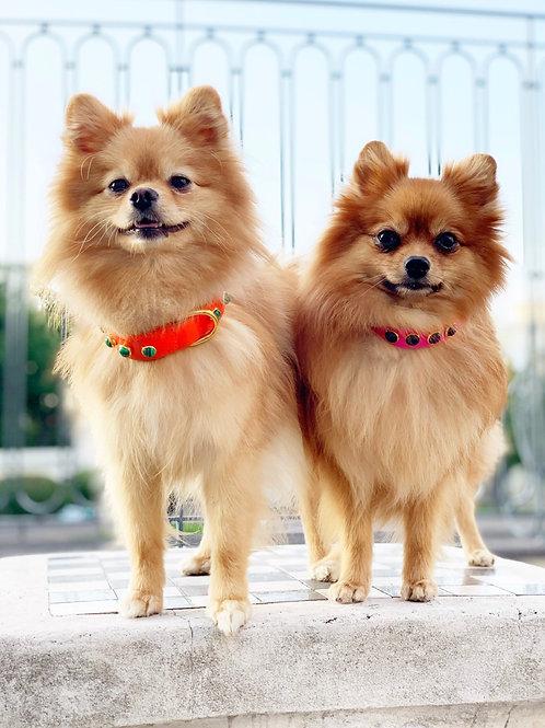 Luxury Designer Leather Dog Collars