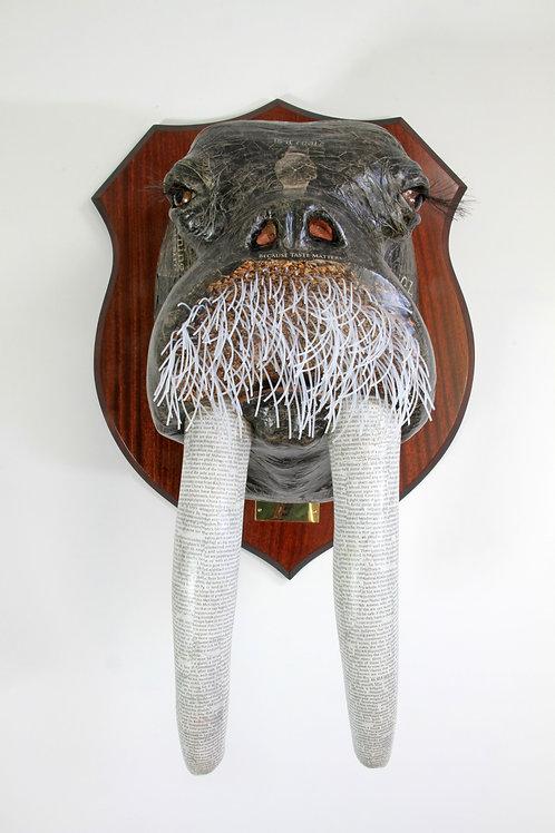 David Farrer - Walrus